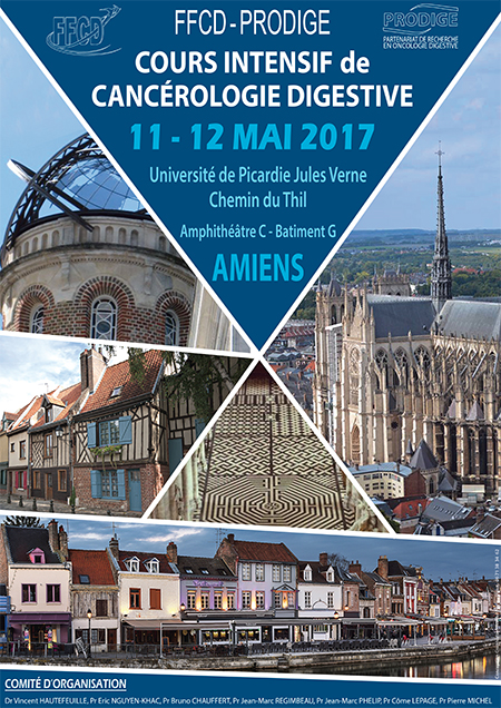 FFCD Vignette affiche Cours Intensif Amiens 2017 web